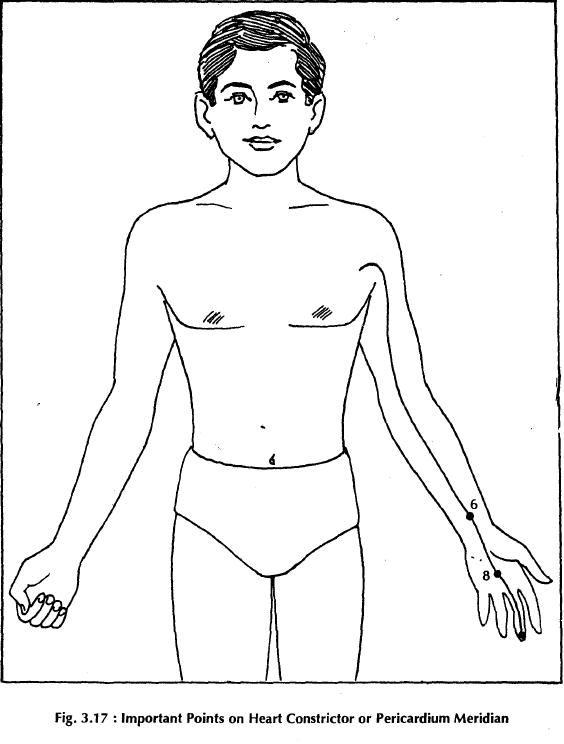 11 heart constrictor pericardium merdian 3.17