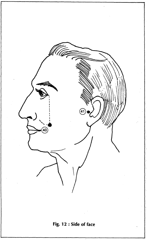 12 side of face