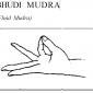 bhudi fluid mudra