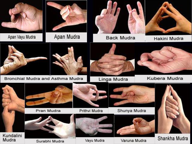 16 important mudras
