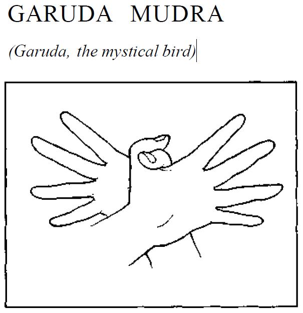 22 garuda mystical mudra