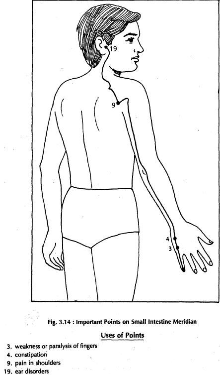 3 small intestine meridian 3.14