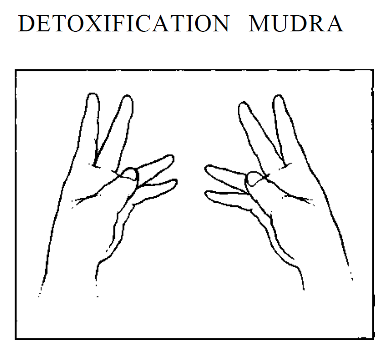 32 detoxification mudra