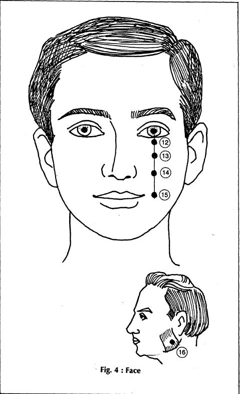 4 face