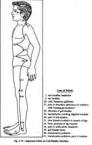 6 gall bladder meridian 3.19