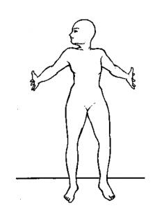 7 linga upright mudra posture