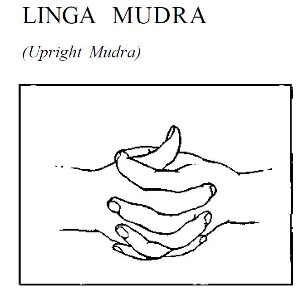7 linga upright mudra