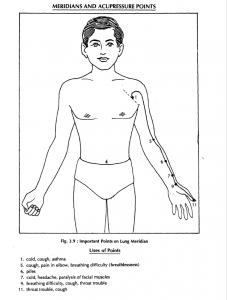 7 lung merdian 3.9