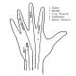 hand reflexology 5