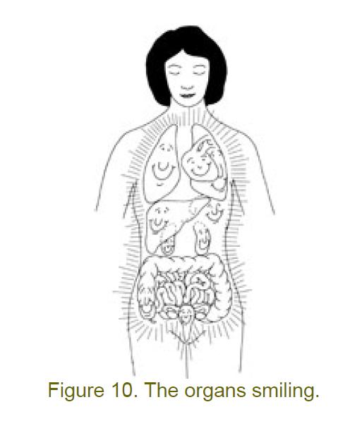 10 organs smiling
