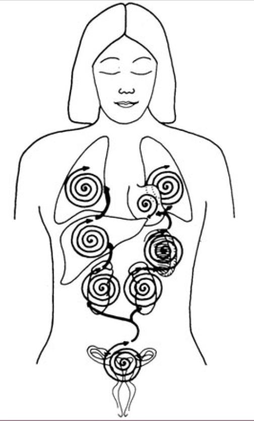 Female Rectal Massage