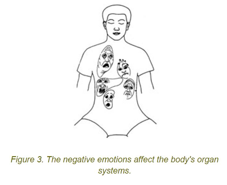 3 negative emotions affect on bodys organ systems