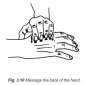 3.10 massage back of the hand