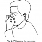 4.27 massage the mid-nose