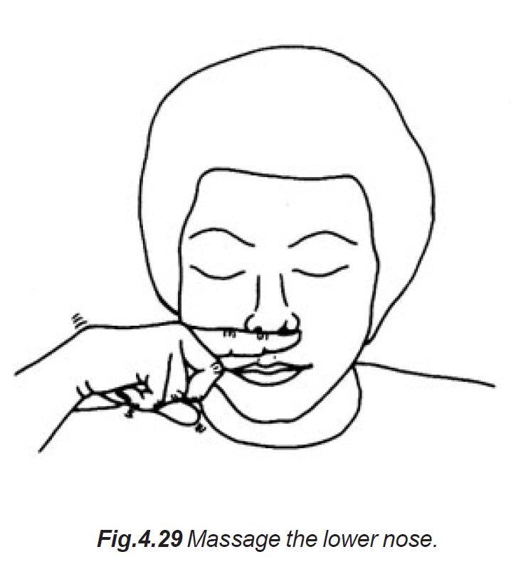 4.29 lower nose massage