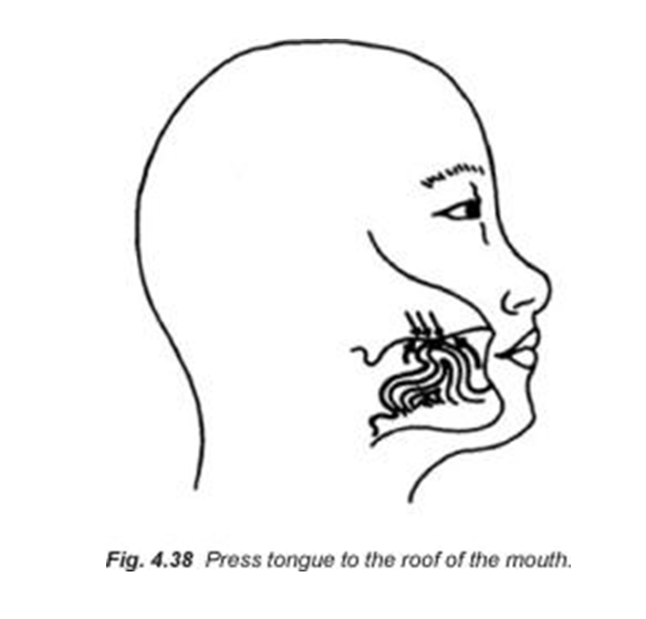 4.38 press tongue to the roof of the mouth