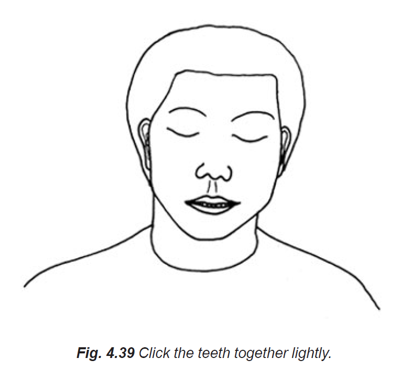 4.39 click the teeth together lightly