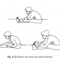8.13 stretch the neck & spine tendons