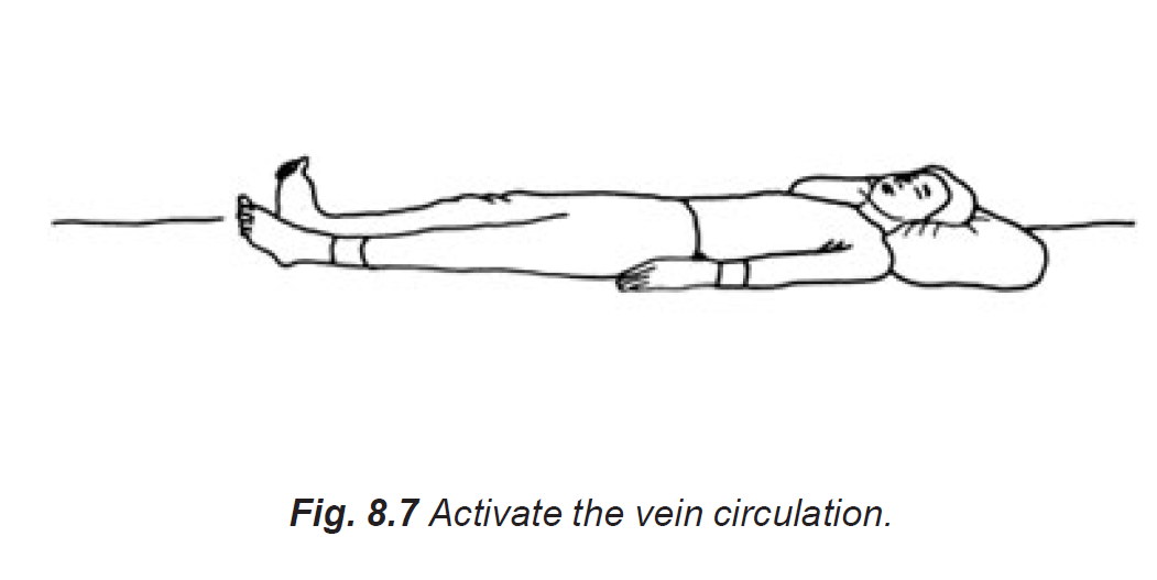 8.7 activate the vein circulation