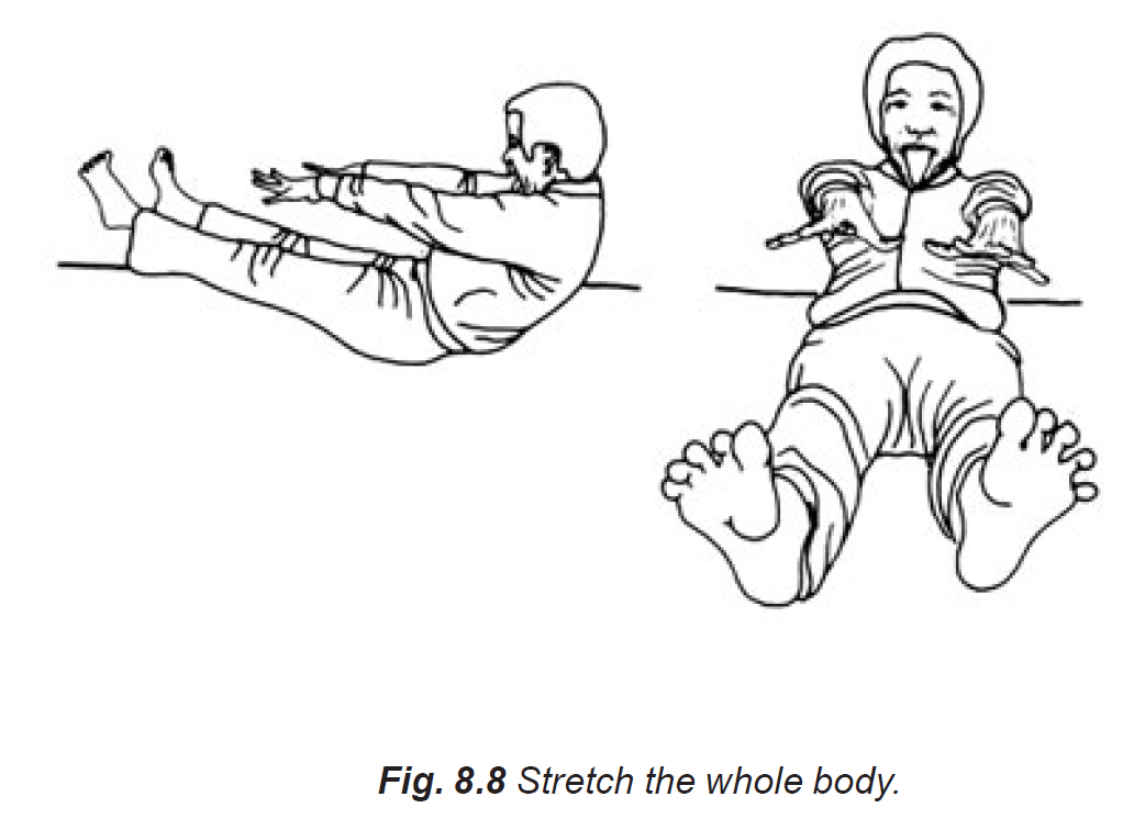 8.8 stretch the whole body