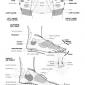 organs to hand and feet reflexology 10