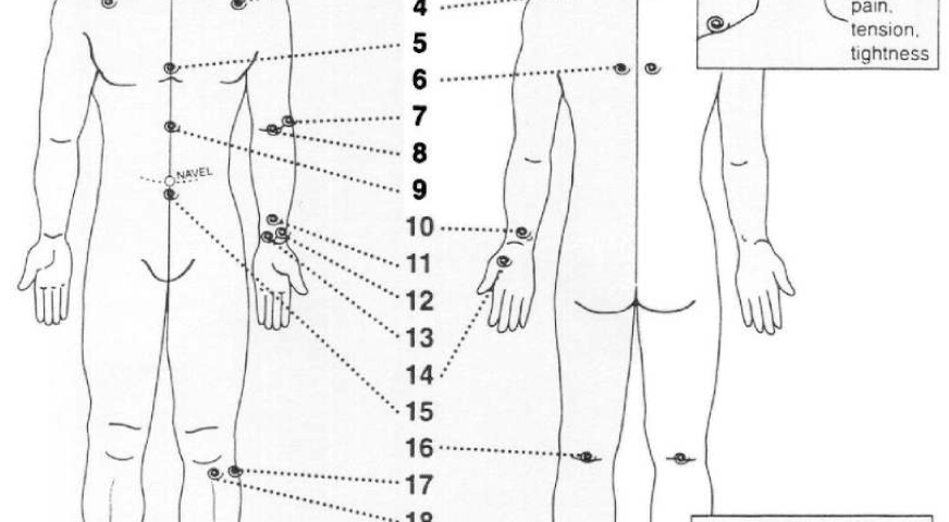 Kyusho Club Pressure Points of the Head - kyusho.online