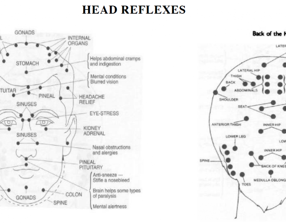 reflex points in the head 13