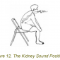 the kidney sound position 2