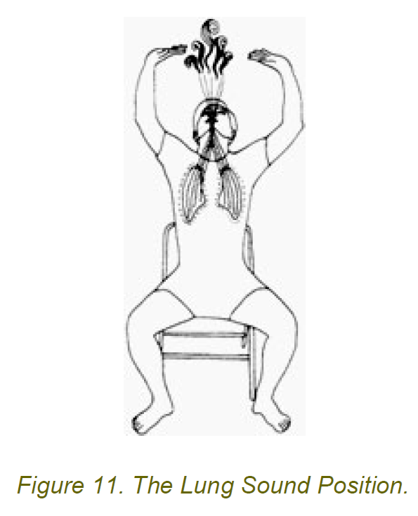 the lung sound position 1