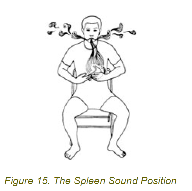 the spleen sound position 5