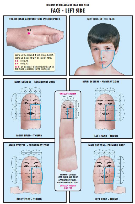 face left side 5