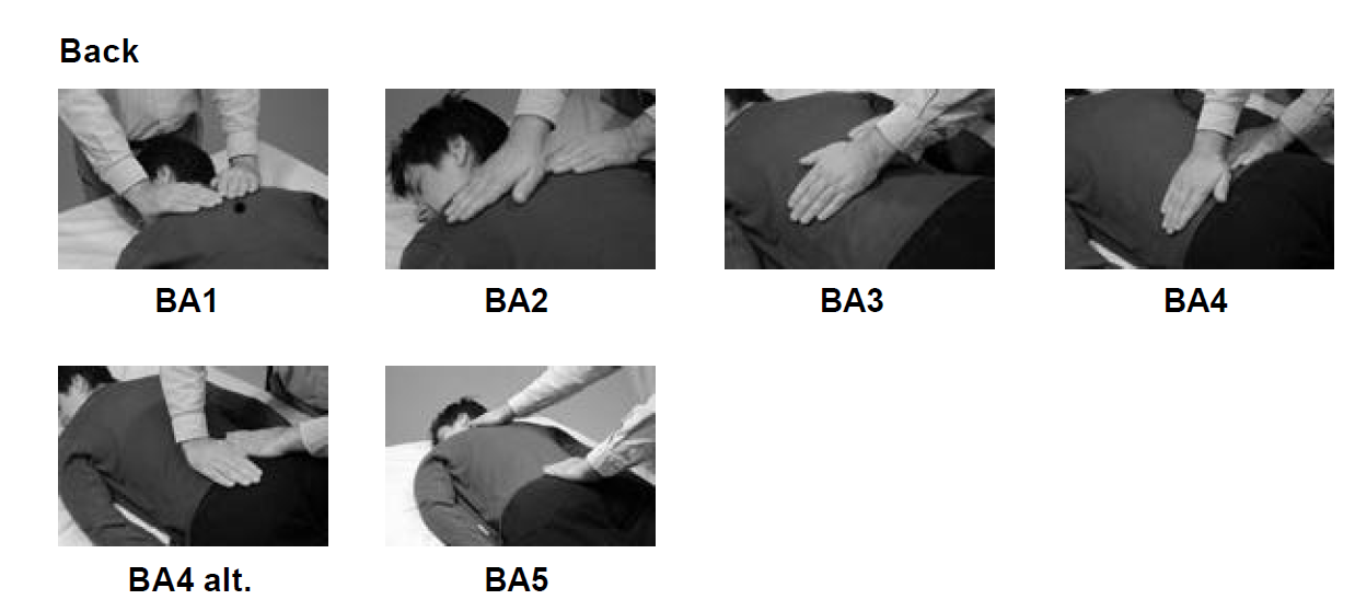 reiki hand positions for back 6