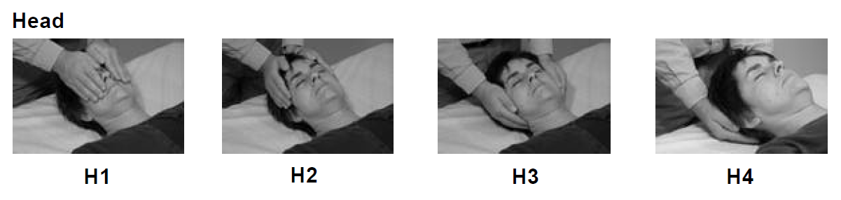 reiki hand positions for head 3