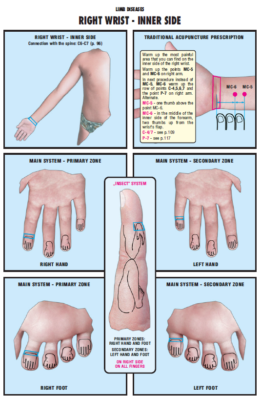 right wrist inner side 51