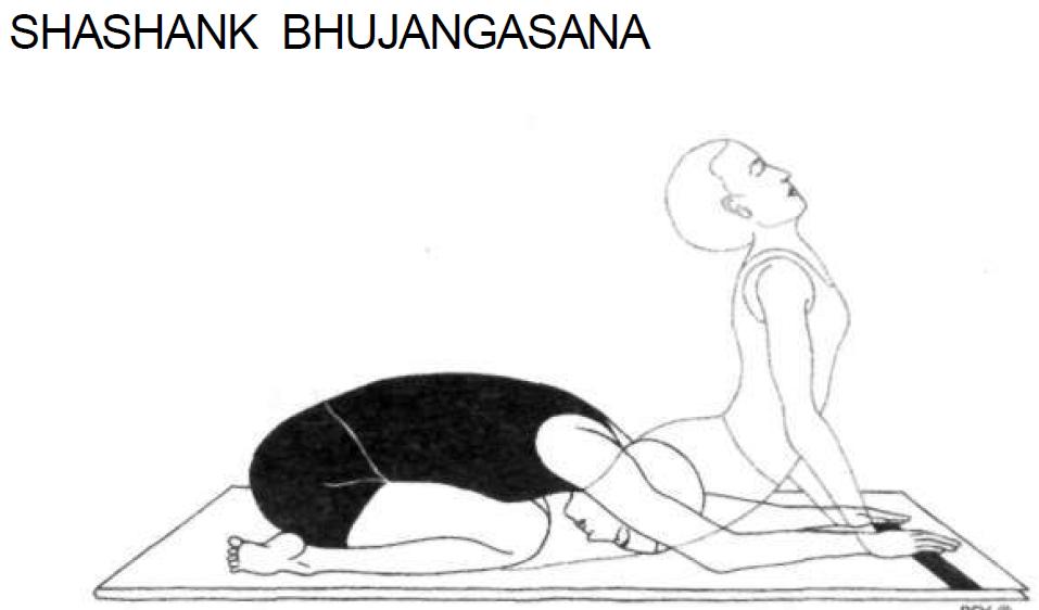 10 shashank bhujangasana