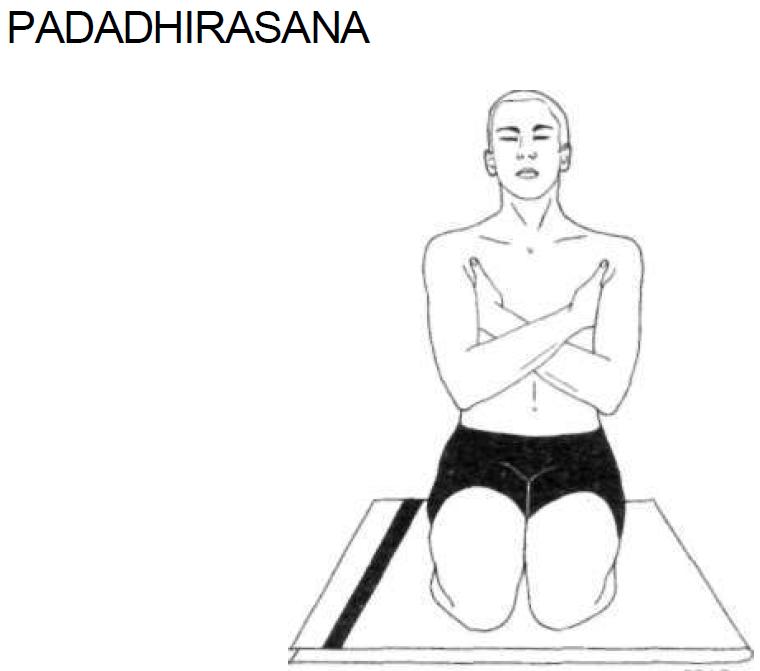 3 padadhirasana
