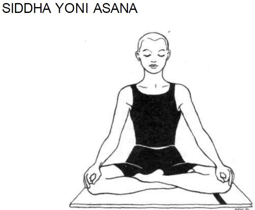 5 siddha yoni asana