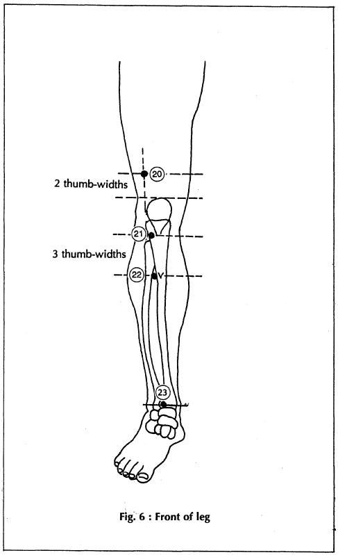 Locate Acupressure Points – Learn Self Healing Techniques Online