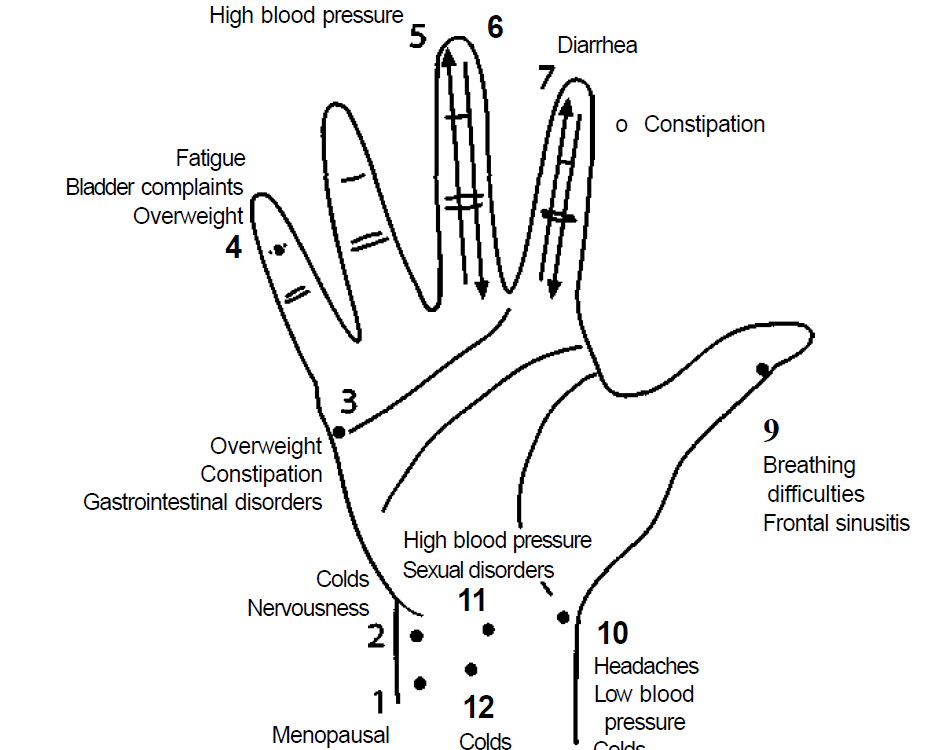front of the hand 2