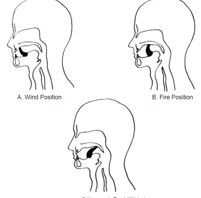 position of tongue